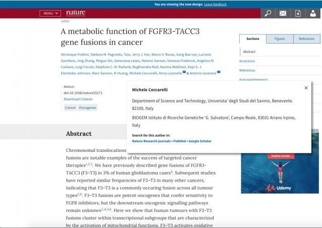 Tumore: due scienziati italiani scoprono la